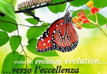 golden lake evolution gestionale